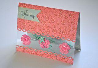 SpringCard Clear Scraps Pinky Hobbs1