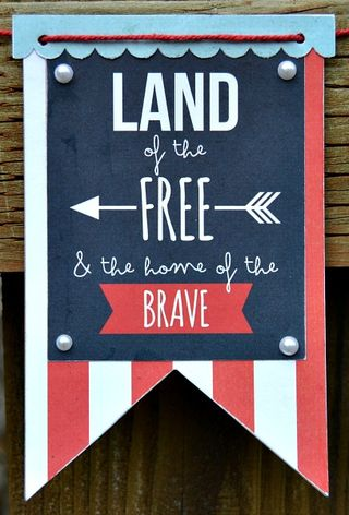 Land of the free banner 3