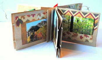 7-Fall foliage album pocket detail