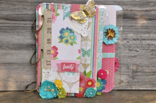 Family_mini album_clear scraps_mixable_ chipboard_ nancy keslin