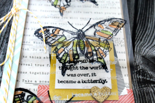 Clear_Scraps_Acrylic_card_butterfly2