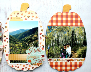 Clear_Scraps_Pumpkin_Wood_Accordion_Shaker_Album11