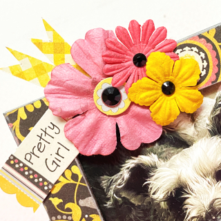 Clear_scraps_3D_frameables_woof_dog_bone_frame_home_decor_tsanders - flowers